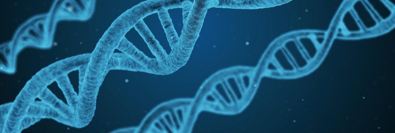 Los Farmacéuticos colaboran ante pacientes con esclerosis múltiple